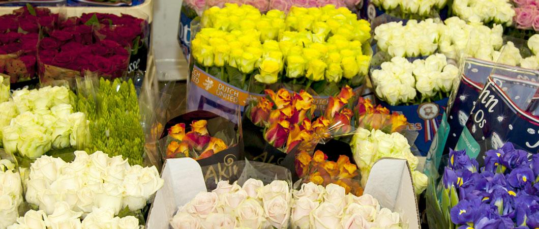 flowers_slide